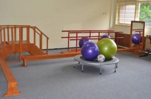 Fisioterapi